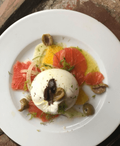 burrata with citrus & fennel